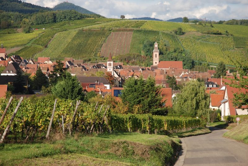 Alsace and the Vosges